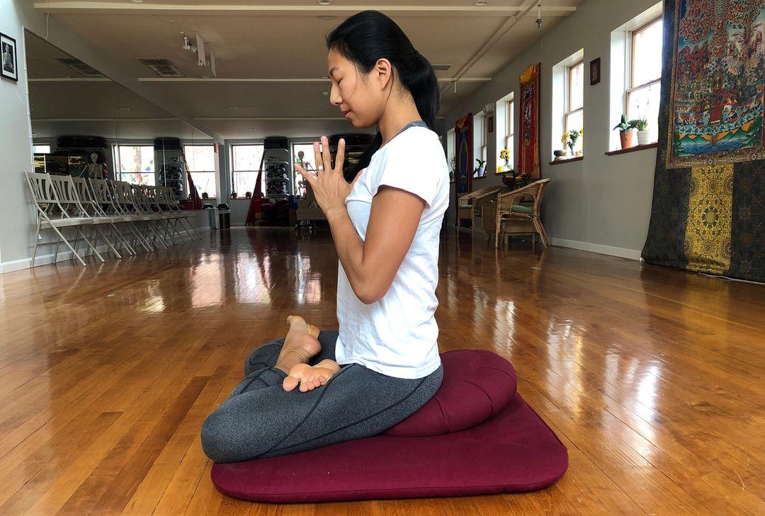 Yoga for Healthy Knees Understanding Biomechanics Can Protect ...