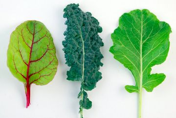 Dark Leafy Greens - Your New Daily Super Food