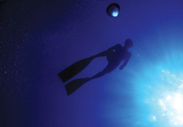 Yoga For Divers - Essential Breathing Tips To Keep Calm And Dive Longer