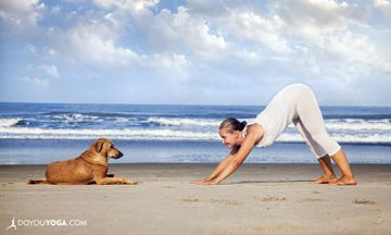 7 Lessons My Dog Taught Me About Being A Better Yogi