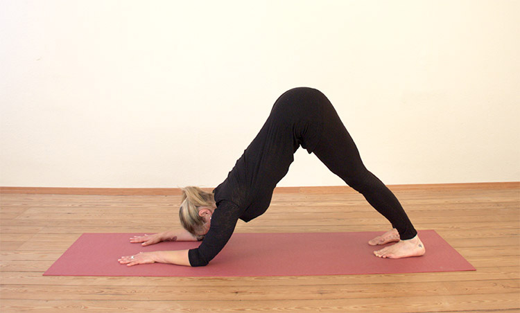 5-Reasons-You-Should-Practice-Dolphin-Pose