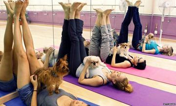 Yoga With Dogs: Bend, Bark, and Bond With Doga