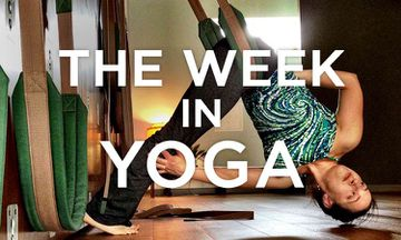 The Week In Yoga #15