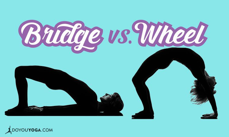 The Difference Between Bridge and Wheel Pose