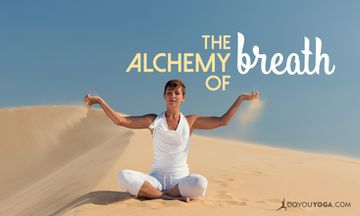 Dirgha Pranayama and the Alchemy of Breath