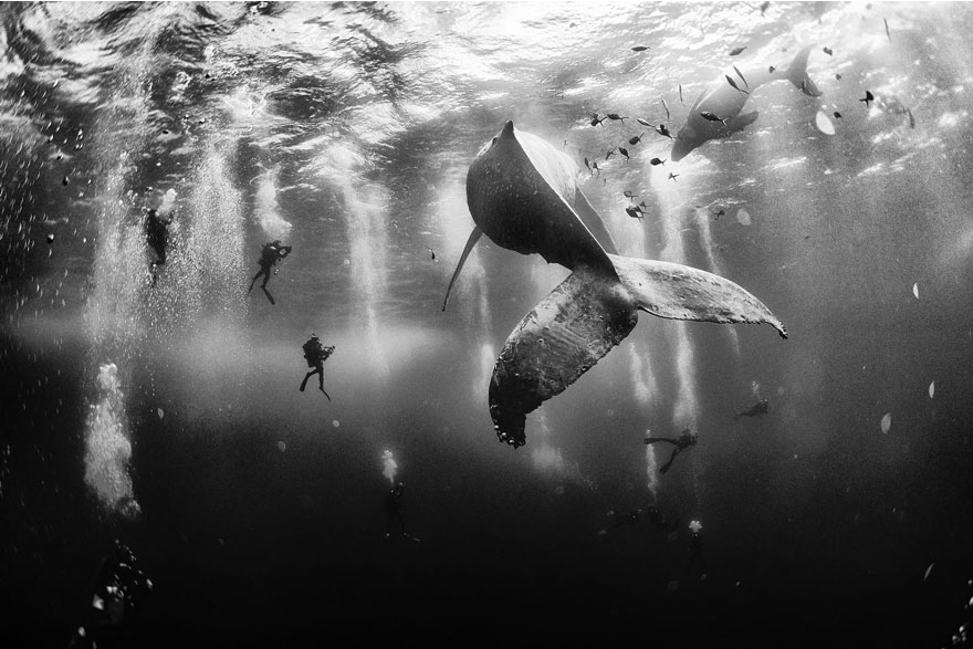 These NatGeo Contest Winners Will Inspire Your Wanderlust 1