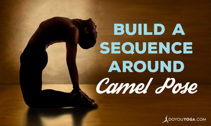 How to Build a Sequence Around Camel Pose