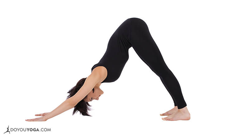 Downward-Facing-Dog-Adho-Mukha-Svanasana2-733x440px