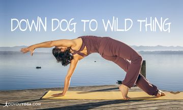How to Move From Down Dog to Wild Thing