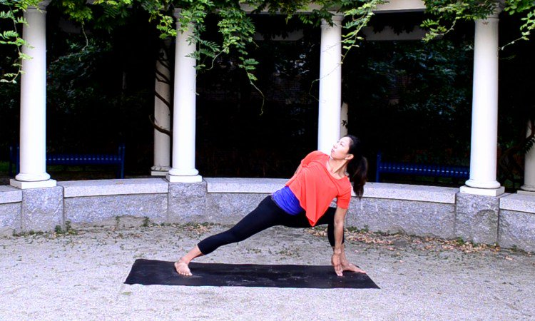 8 Yoga Poses To Prepare For Bird Of Paradise Pose Doyou